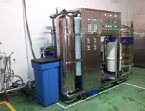 Iron removal + RO membrane + ion exchange 400 L/h, for environmental testing (in a Japanese plant)